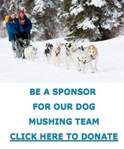 Tim dog mushing