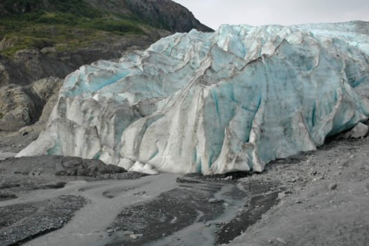 Anchorage Seward wildlife glacier bus tour